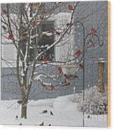 A Sea Of Cardinals At The Feeder Wood Print