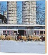 A Sheepish Winter's Day Wood Print