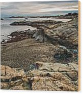 A Shot Of An Early Morning Aquidneck Island Newport Ri Wood Print