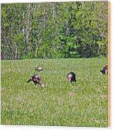A Shot Of Wild Turkey Wood Print