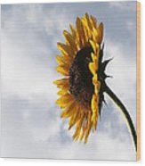 A Side Of Sunflower Wood Print