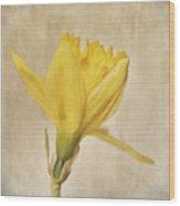 A Simple Daffodil Wood Print