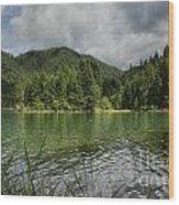 A Small Island Wood Print