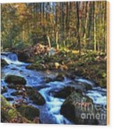 A Smoky Mountain Autumn Wood Print