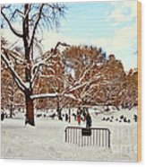 A Snow Day In Central Park Wood Print