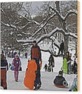 A Snow Day In The Park Wood Print