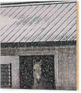 A Snowfall At The Stable Wood Print