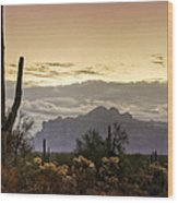 A Sonoran Morning  Wood Print