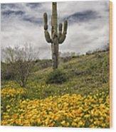 A Southwestern Style Spring Wood Print