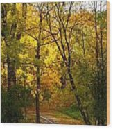 A Special Road Wood Print by Jocelyne Choquette