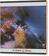 A Splash Of Autumn Wood Print
