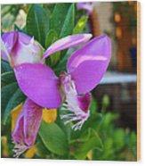 A Splash Of Fuchsia Wood Print