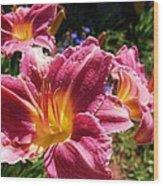 A Splash Of Lilies Wood Print