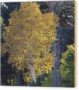 A Splash Of Yellow Wood Print