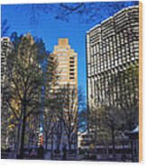 A Spring Day At Rittenhouse Square Wood Print