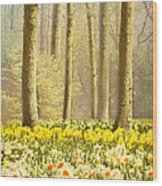 A Spring Day Wood Print by Jasna Buncic