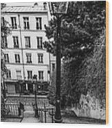 A Spring Walk In The City Bw Wood Print