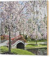 A Spring Walk Wood Print