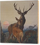 A Stag With Deer In A Wooded Landscape At Sunset Wood Print by Charles Jones