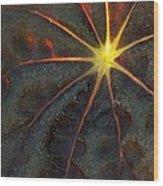 A Star Wood Print