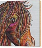 A Stick Horse Named Amber Wood Print