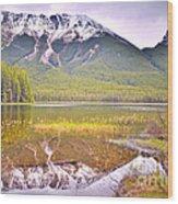 A Still Day At Buck Lake Wood Print
