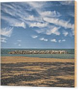 A Storm Barrier On Presque Isle Wood Print