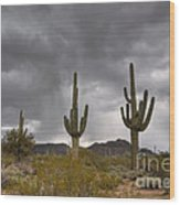 A Storm In The Sonoran Desert Wood Print