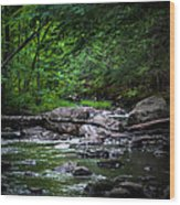 A Stream In Embden Wood Print