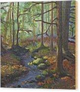 A Stream Of Light Wood Print
