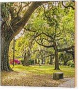 A Stroll In City Park Wood Print