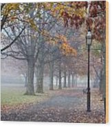 A Stroll In Salem Fog Wood Print