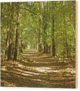 A Stroll In The Park Wood Print