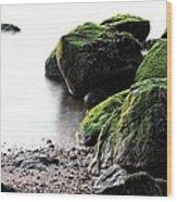 A Study In Green Wood Print