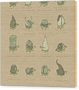 A Study Of Turtles Wood Print