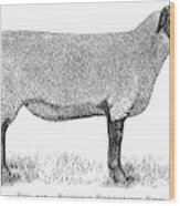 A Suffolk Shearling Ewe          Date Wood Print