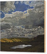 A Summer Day On Cottonwood Pass Wood Print