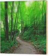 A Summer Trail Wood Print