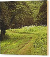 A Summer's Trail Wood Print