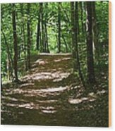A Summer's Walk Wood Print