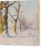 A Sunny Winter's Day Wood Print
