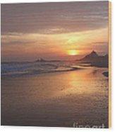 A Swift Sunset Wood Print