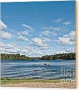 A Swim In The Lake Wood Print
