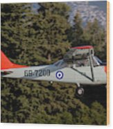 A T-41d Trainer Aircraft Wood Print