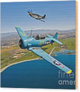 A T-6 Texan And P-51d Mustang In Flight Wood Print