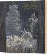 A Twisted Fairy Tale Wood Print by Mary Amerman