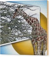 A Taste From The Other Side Wood Print by Sue Melvin