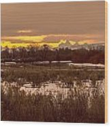 A Teton Dawn In Spring Wood Print