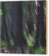 A Thin Veil Wood Print