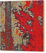 A Touch Of Autumn Abstract Vii Wood Print